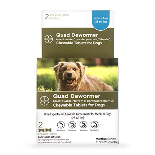 Bayer Chewable Quad Dewormer for Medium Dogs, 26-60 lbs, 2 chewable tablets