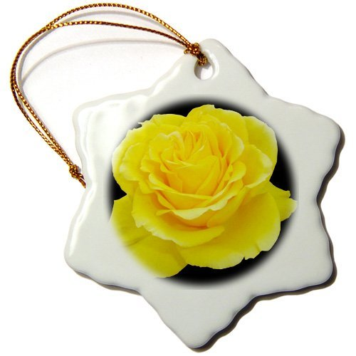 Blake55Albert Yellow Rose Close Up Photograph Ofyellow Rose of Texas Isolated on Black Background Christmas Ornaments for Kids Christmas Tree Decoration Ceramic 3 Inches