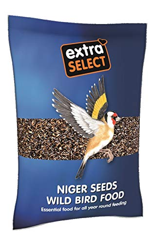 Extra Select Niger Seed Wild Bird Food, 1 kg