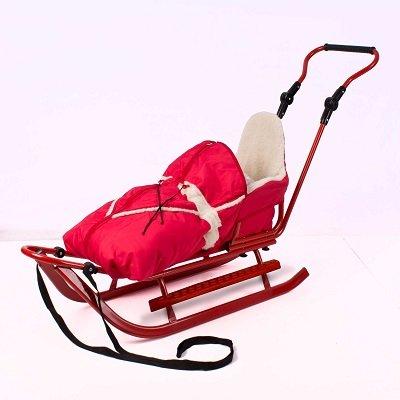 Luxus Schlitten mit umfangreichem Zubehör, NEU (silber-rot)