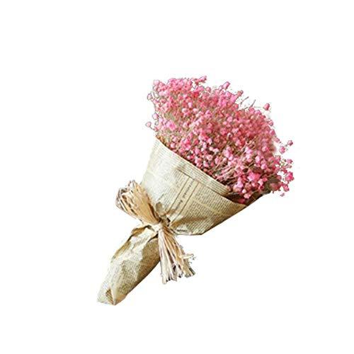 poetryer 1 Ramo De Flores Secas Naturales Gypsophila Gypsophila Ramo De Flores Ramo De Ramas Secas para Decoración De Casa, Jardín, Boda, Fiesta
