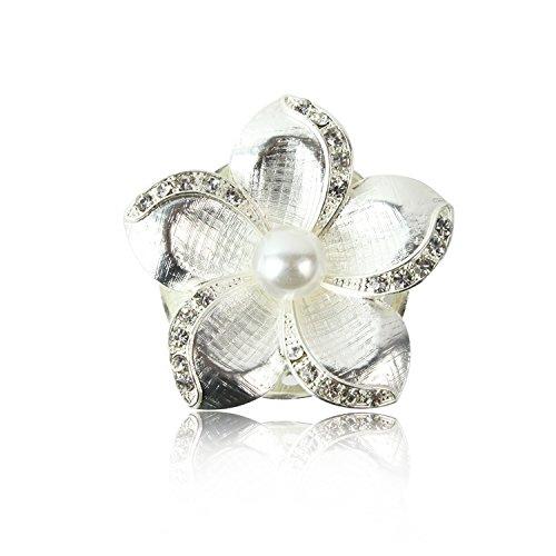 Glamexx24 Spilla Gioielli Magnete incanta Buttone con Strass Pietra Brillanti per Vestiti Sciarpe Ponchos