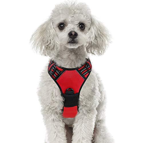 rabbitgoo No-Pull Hundegeschirr atmungsaktiv Brustgeschirr Geschirr für Hunde Welpengeschirr Reflexstreifen Sichere Führung Einstellbar Weich Rot M