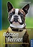 Boston Terrier: Auswahl, Haltung, Erziehung, Beschäftigung (Praxiswissen Hund)