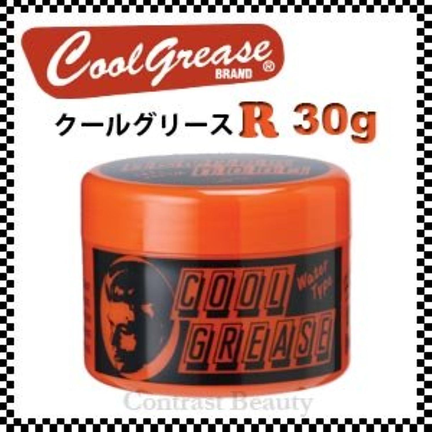 降ろす別に類推【X2個セット】 阪本高生堂 クールグリース R 30g