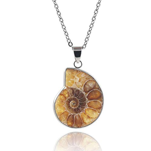 Natural Spiral Ammonite Fossil Pendant Charm Necklace Conch Shell Fibonacci Jewelry for Women and Man