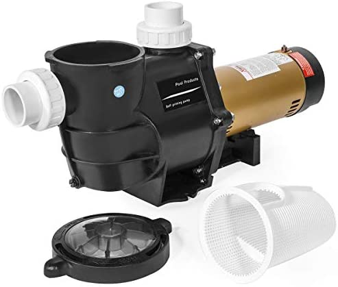 Top 10 Best z135 jacuzzi hot tub motor and pump Reviews