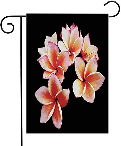 MOHUI Yellow Tropic Glorious Frangipani Plumeria Flowers Black Holidays Nature Hawaiian Lei Spa Exotic Garden Flag Yard Decorations Outdoor Vertical Double Sided Polyester Flag 12' x 18'