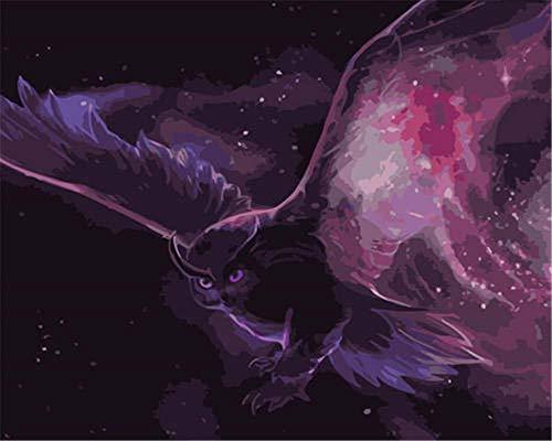 N\A Pintar por Números para Adultos Púrpura, Búho, Pájaro para Amigo Adultos Niños Tercera Edad Junior