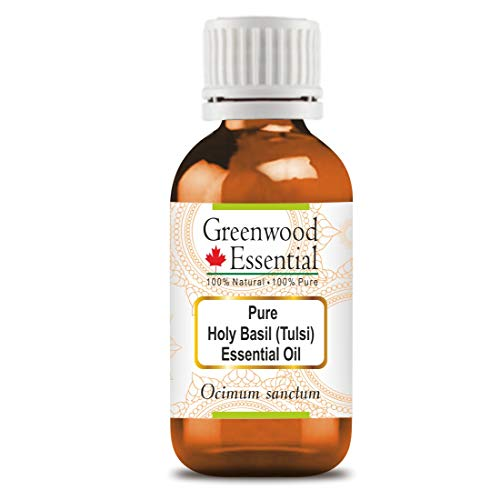 Greenwood Essential Huile essentielle de basilic sacré (ocimum sanctum) pure, 100% naturelle, de qualité...