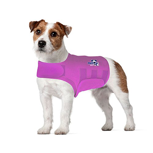 Mellow Shirt Dog Anxiety Calming Wrap, Small, Radiant Orchid