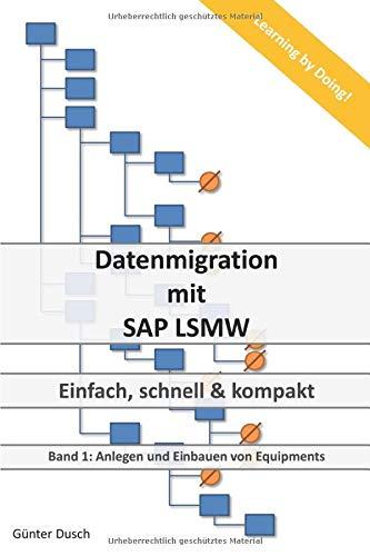 Datenmigration mit SAP LSMW: Einfach, schnell und kompakt (Anlegen und Einbauen von Equipments, Band 1)