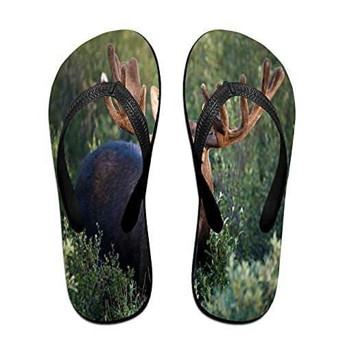 Sandales unisexes minces à bascule,Bois de cerf orignal renne animaux dans, Tapis de yoga Flip Flops plage confortable bracelet en cuir avec légère en EVA Sole Taille M