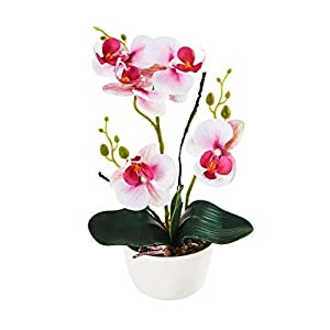 "Imiee Silk Flowers with Pot 31cm in Height Artificial Orchid Phalaenopsis Arrangement Flower Bonsai with Vase for Room Table Centerpieces-H:12""(Pink)"