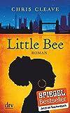 Little Bee: Roman