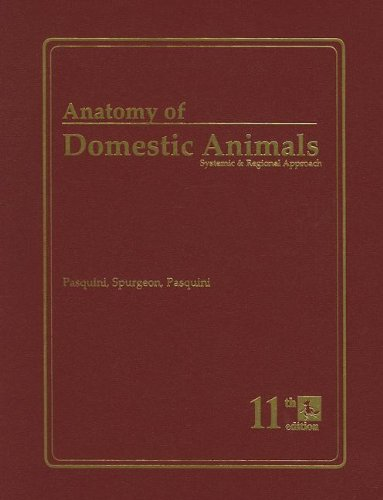 Anatomy of Domestic Animals: Systemic & Regional Approach
