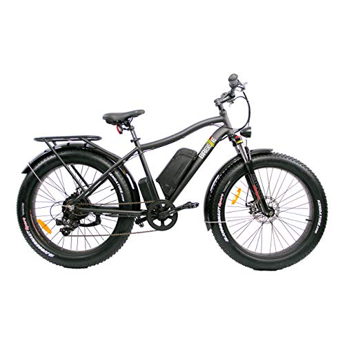 Breeze Electric Fat Bike