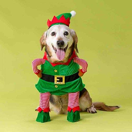 House of Paws Disfraz de elfo de Navidad para perro pequeo, mediano y grande (mediano)