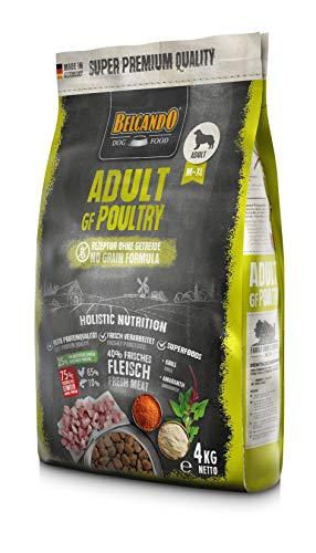 Belcando Adult GF Poultry [4 kg] getreidefreies Hundefutter | Trockenfutter ohne Getreide mit Geflügel | Alleinfuttermittel für ausgewachsene Hunde ab 1 Jahr