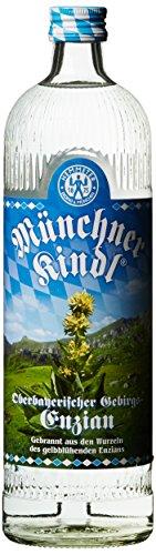 Münchner Kindl Gebirgsenzian
