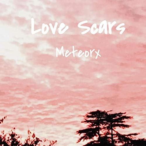 MeteorX