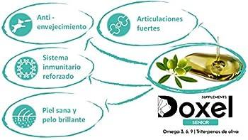 Doxel Senior-250 ML   Huile pour Chiens   Complément   Anti-inflammatoire   Anti-vieillissement   Articulations saines   Système immunitaire   Oméga-3-6-9   Vitamine E
