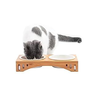 Petacc Comedero para Gatos Tazón Elevado para Mascotas Combinado con Soporte de Bambú y Cuencos de Melamina (2 Cuencos) 4