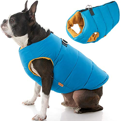 Gooby Padded Vest Dog Jacket - Solid Turquoise, Medium - Warm Zip Up Dog Vest Fleece Jacket with Dual D Ring Leash - Water Resistant Small Dog Sweater - Dog Clothes for Small Dogs Boy and Medium Dogs