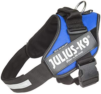 Julius K9 16IDC B 1 IDC Powerharness dog harness Size 1 Blue product image