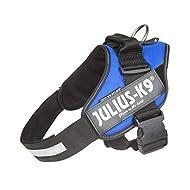 Julius-K9, 16IDC-B-1, IDC Powerharness, dog harness, Size: 1, Blue