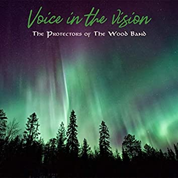 Voice in the Vision