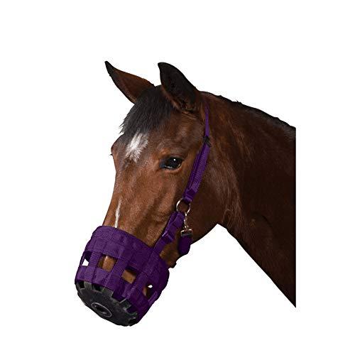 Roma - Bozal de pasto para caballos (Cob) (Púrpura)