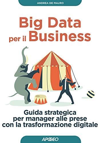 Big Data per il Business