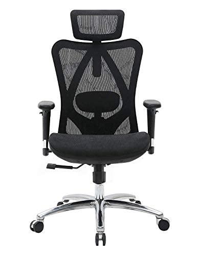 SIHOO Ergonomic Home Office Chair Adjustable Lumbar Support 3D...
