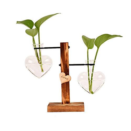LACKINGONE Jarrón para plantas, jarrón de cristal, hidropónico, jarrón colgante, jarrón decorativo con soporte de madera, transparente, forma de corazón, 1 unidad (dos oves)