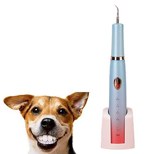ZOOMLOFT Cane Gatti Spazzolino da Denti Set Tartaro Tempo di Pulizia ad Elettrico Ultrasuoni Pulizia Pet Animali Domestici Machine Tool