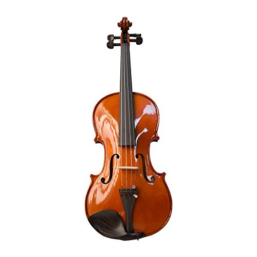 Kadence Vivaldi Violin VIV101G Solid Spruce Top, Maple Back and Glossy Body