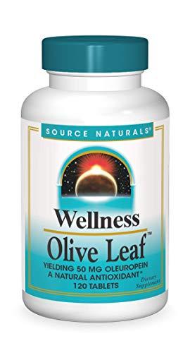 Source Naturals Wellness Olive Leaf, 120 Tablets