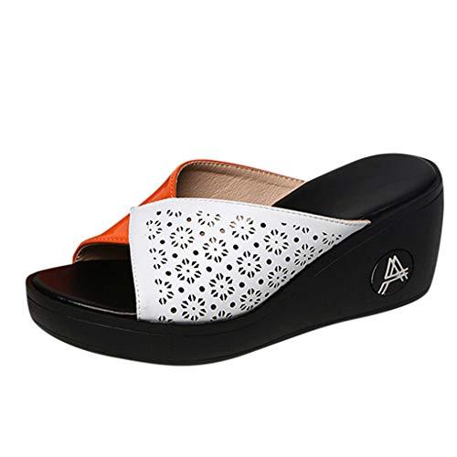 Clogs Hausschuhe Badeschuhe Zehentrenner Pantoletten Sandalen Trekking Sandalen Bade Sandalen Flops Offroad Sneaker Erholungsschuhe Pantoffeln (39,Orange)