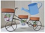 M L Macetero de Hierro Forjado en Forma de Bicicleta para 3 macetas de Barro + regadera de Laton - Porta macetas