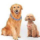 Mitening 2 Pcs Collar Luminoso Perro, USB Recargable Collar Perro Seguro para Mascotas, 3 Modos de LED Perro Collar Brillantes y Longitud Ajustable para Perros, 70CM (Azul y Rojo)