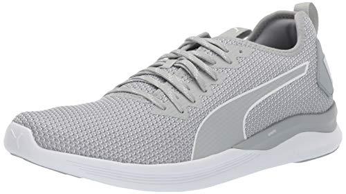 PUMA Men's Ignite Flash Sneaker, Quarry White, 10.5 M US