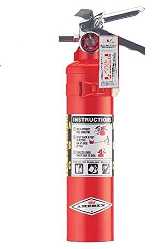 Amerex ABC, Dry Chemical Fire Extinguisher - B417T - 2.5 Pounds Certification Tag, Ready For Fire Inspections