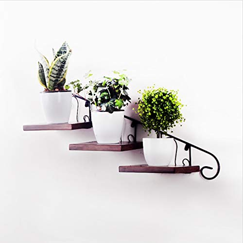 Liyijiestore Wand Montiert Pflanzen Halterung,Hängende Regalträger Metall,Industrielle Retro-Hauptdekoration(DREI Bretter) (Size : B)
