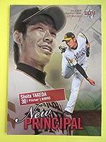 BBM2013ベースボールカード1stバージョン NP09 福岡ソフトバンクホークス 武田翔太投手 30 コレクション