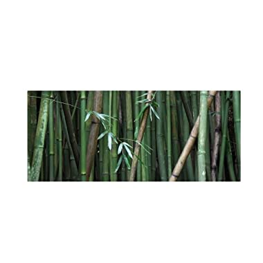 Bamboo by Pierre Leclerc work, 14 by 32-Inch Canvas Wall Art