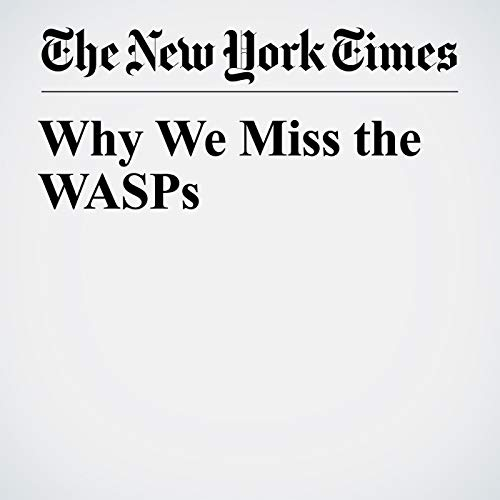 Why We Miss the WASPs audiobook cover art