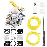 Hilom Carburetor with carb kit Fuel Filter...