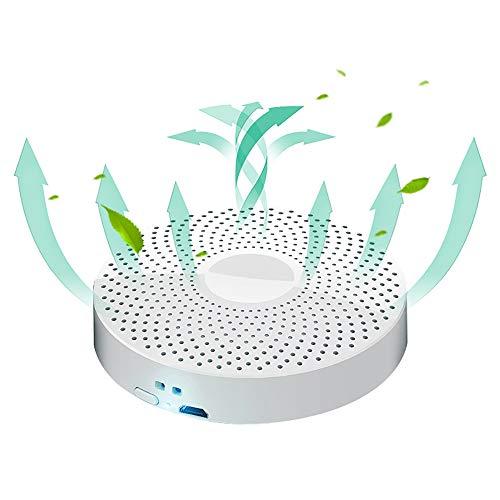 Esterilizador de ozono, generador de hogar cuadro de desinfección UV portátil para la pequeña ropa interior UV, Profesional UV Esterilizador Caja, tranquilo y respetuoso del medio ambiente