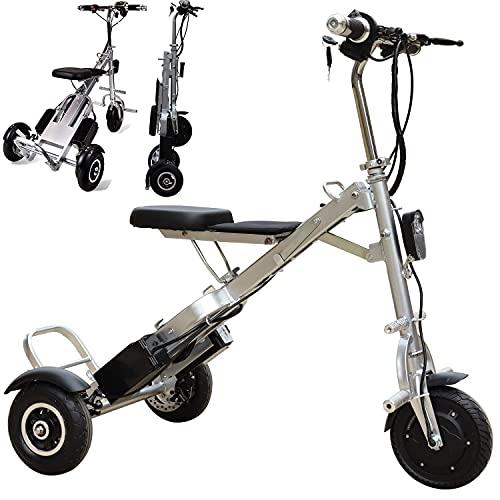 SXFYHXY Bicicleta Eléctrica Plegable para Adultos Y Adolescentes Triciclo Eléctrico con Motor De 250 W Y Batería De Iones De Litio Extraíble De 36 V Y 5 Ah con Canasta Plegable Y Portátil